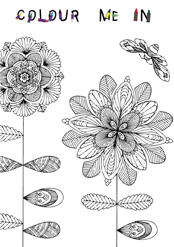Colouring Book Brochure Inside